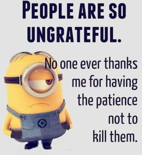 """Best 40 Very Funny Minion Quotes #Funny explore Pinterest""""> #Funny Minions #Minions explore Pinterest"""">…"""