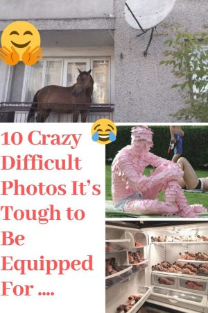 """10 Crazy Difficult Photos It's Tough to Be Equipped For ……. #Crazy explore Pinterest"""">…"""