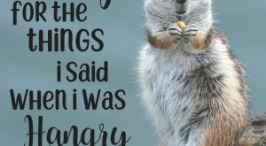 "I'm sorry for the things I said when i was hangry. #celebratingweakness explore Pinterest"">…"