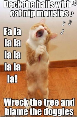 I want use this Pin to Make Funny Animals Pictures Collection that make funy,…