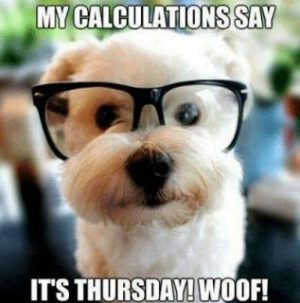 My Calculations say it's Thursday! Woof!! Funny Thursday Meme