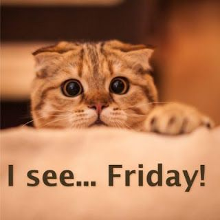 I see… Friday! Funny Thursday Meme Collection. Top Funny Thursday Memes here.
