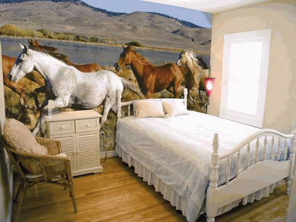 horse bedrooms   … Themed Bedrooms for Horse Crazy Girls of All Ages &…