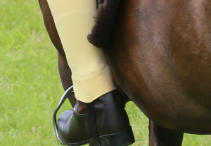 The rider weight debate and why it's not fat-shaming: H&H responds – Horse &…