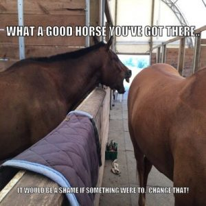 Nice horse you got would be a shame is someone changed that! Lol