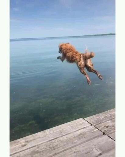 Jumping into summer like …😍
