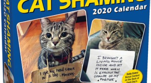 Cat Shaming 2020 Desk Calendar –