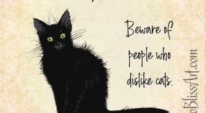 Irish Proverb: Beware of People Who Dislike Cats | Choice of 4 Styles | Perfect Gift for Lovers of I