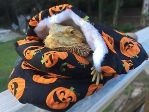 HALLOWEEN PRINT DESIGN 2?LRG BED SOFT COVERS ONLY/NO FRAME BED 4 BEARDED DRAGON  …
