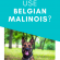Why Do Police Use Belgian Malinois?