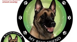 Belgian Malinois My Best Friend Circular Magnet
