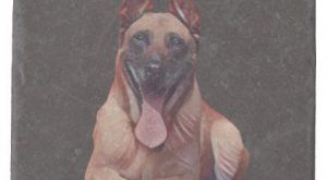 Beautiful Painted Belgian Malinois Marble Coaster