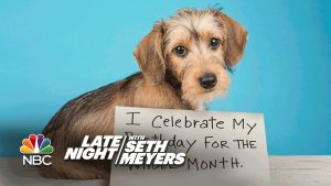Extreme Dog-Shaming: Birthday Month, Roomba Defiler-PLEASE SHARE:) https:/ Blessings