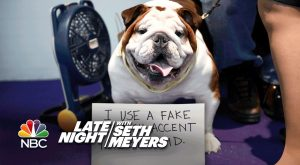 Extreme Dog-Shaming: Westminster Dog Show Edition – Look and Feel 20 Years Younger Is…